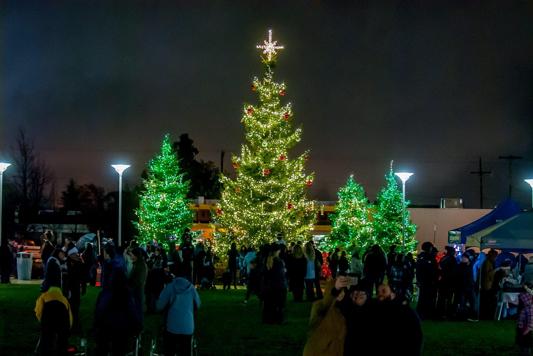 Medford Winter Lights Festival